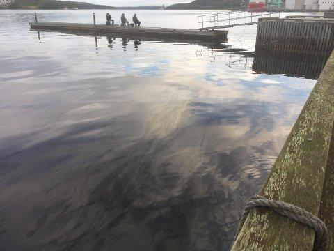 Det er båten Nordvard olja har lekket fra.
