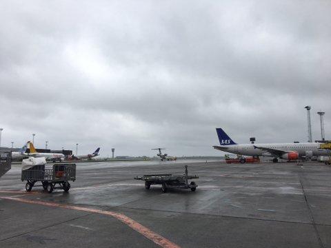 BIODRIVSTOFF: SAS-sjef Rickard Gustafson mener flypassasjeravgiften bør brukes til biodrivstoff.