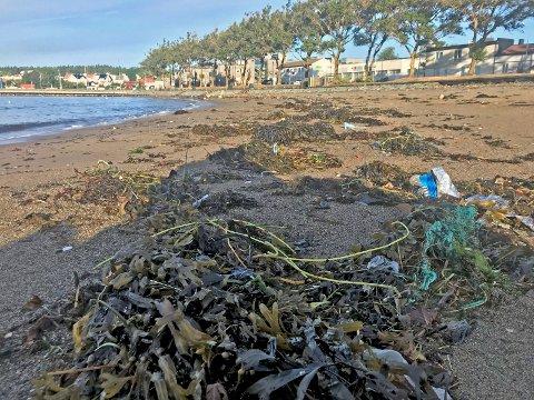 PÅ SJØBADET: Sprengtråd og plastsøppel fotografert på Sjøbadet sist lørdag.
