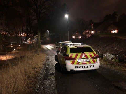 Politiet rykket ut med to patruljer da ungdommer barket sammen på en fest på Jeløy lørdag kveld.