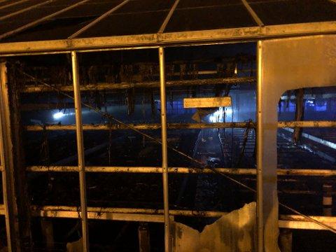 UTBRENT: Store deler av drivhuset er utbrent.