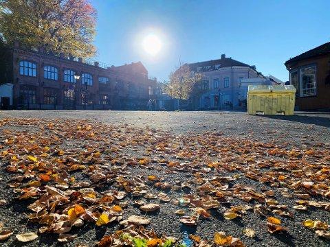 HØST: Denne uken blir det nydelig høstvær i Moss.