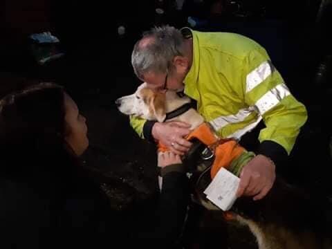 TIL RETTE: Onsdag ettermiddag ble hunden Whisky funnet igjen, 17 dager etter at han ble borte på gåtur.