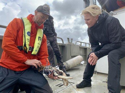 Havforskningsinstituttets Even Moland og fylkesråd for klima og miljø Anne Beathe Tvinnereim på befaring ved Kvernskjær på Hvaler. Området er fredningsområde for hummeren i dag.