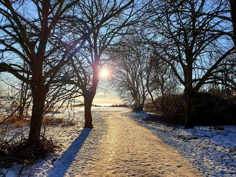 MILDERE: I helgen utnyttet flere vinterværet med blå himmel, snø og kulde – torsdag ser det annerledes ut.