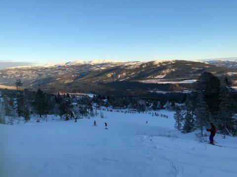 MYE FOLK: Mange tok turen for å stå på ski i finværet.