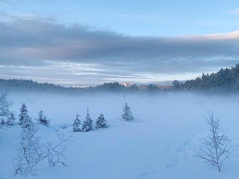 Januar har bestått av et upåklagelig vær, i hvert fall for vinterentusiaster.
