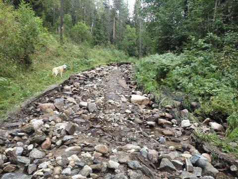 ØDELAGT: Flere turveier i Østmarka er totalt ødelagt av de store vannmengdene som dalte ned tidligere denne uken. Foto: Trine Dahl-Johansen