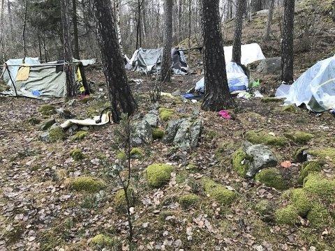 ULOVLIG CAMPING: Leserbilde av villcampingen i Ekebergskogen. Nå settes det av mer penger til å håndtere problemer knyttet til bostedsløse. Foto: Privat