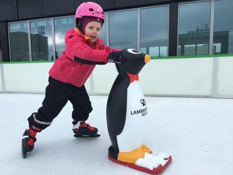 FØRSTE PÅ ISEN: Emile var den første som fikk prøve den nye skøytebanen på taket av Lambertseter Senter. For de som ikke føler seg helt trygg på skøyter, er det fint å kunne støtte seg til en pingvin.