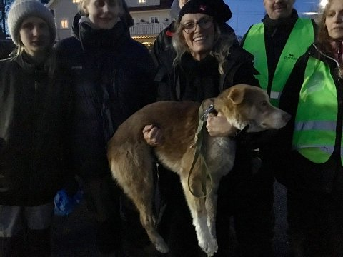 ENDELIG: Bildet er tatt på Ulvøya etter at Emanuella (i midten med Herman) klarte å lokke hunden til seg. Hun hadde tatt turen fra Athen for å hjelpe til. Til venstre er eier Kristine Sørheim. På bildet er også flere venner av henne og medlemmer av Fb-gruppen Rømlingen. Foto: Privat