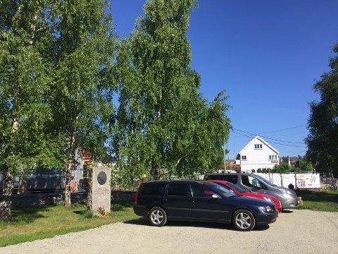 HOLTET: Hroar Møthe i Aksjon Holtet mener Holtet er et eneste stort kaos om dagen. Her fra Marienlunden som for tiden brukes til parkering. Foto: Nina Schyberg Olsen