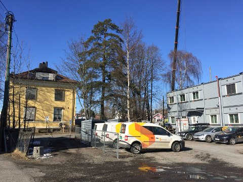 JULETRETOMTA: Lag en park her når trikkebasen er ferdig, er oppfordringen fra Dag Sjøberg. Foto: Nina Schyberg Olsen
