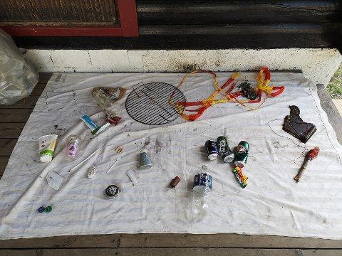 Bildet viser noe av søppelet skolestarterne ved Ekeberg idrettsbarnehage fant på Nordstrand bad. De tok med noe av søpla tilbake til barnehagen for å se hva som egentlig lå på stranda. Foto: Innsendt