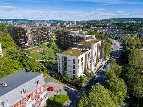 SANDSTUVEIEN: I skråningen fra Libakkveien ned mot Sandstuveien skal hus erstattes av boligblokker med tilsammen 107 leiligheter. Prosjektet Brattlitoppen sees øverst til venstre, med prosjektet S54 Oslo på nedsiden.