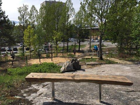 LAMBERTSETER: Natur- og aktivitetsparken på Lambertseter får penger fra byrådet så området kan blomstre mer.