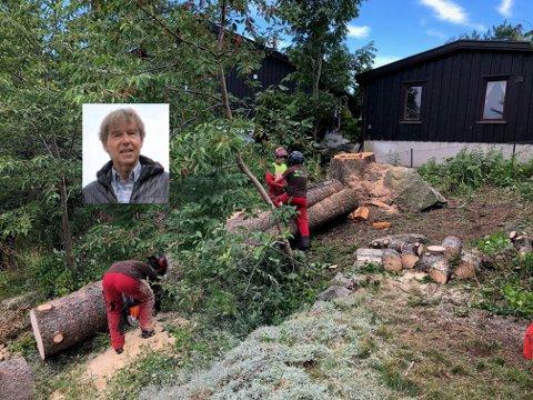 OMSTENDELIG: Arne Boug er oppgitt over at det tok flere måneder før han fikk tillatelse til å felle et gammelt tre som sto i fare for å falle ned på nabohuset i bakgrunnen.