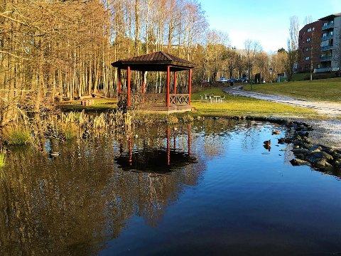 Paviljongen med andedam, Lusetjernbekken og parkområdet