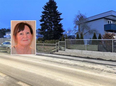Christina Uhnger er oppgitt over den overdrevne bruken av salt på veiene. Hun har måttet henge opp presenninger på gjerdet sitt for at plantene ikke skal bli ødelagt av saltet.