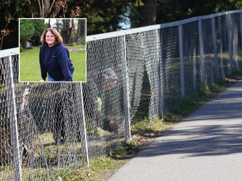 Sonja Haug har ansvaret for hagearbeidet på Nordstrand kirkegård. Nå fortviler hun over at folk ødelegger gjerdene rundt kirkegården.