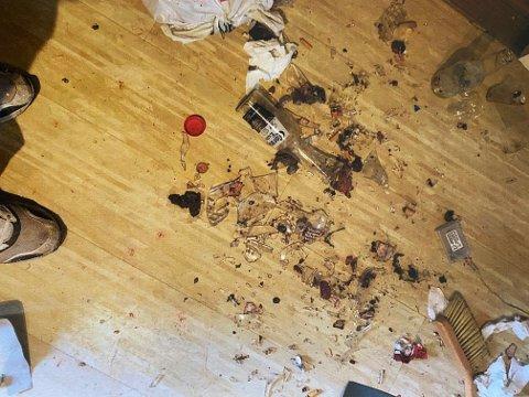 GLASSKÅR: På tidspunktet dette bildet ble tatt var det fullt av knust glass på gulvet i leiligheten. Foto: Privat