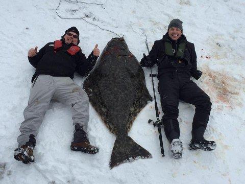 STEIKE FOR EN KVEITE: Kveita veide 97 kilo og er nesten like lang som Erling Bjørnås (til venstre) og svigersønnen Andreas Stormvinge.