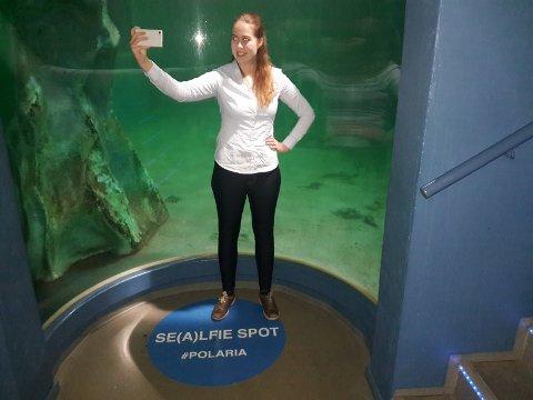 SEALFIESPOT: Anne Fause ved Polaria viser frem sealfie-punktet.