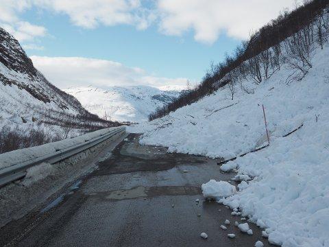 Skredet har gått over Fv 87 i Tamokdalen.