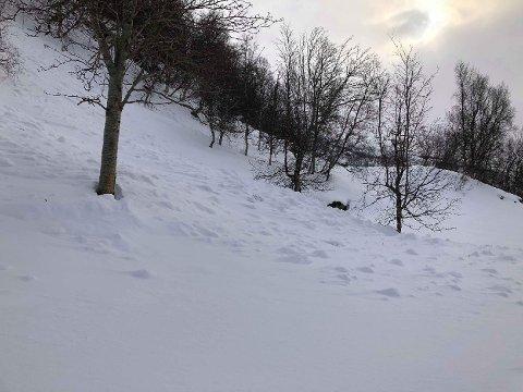 AKETUR: To barn akte ned denne bakken ved Rovdas i Nordreisa kommune i forrige uke, da snøen plutselig løsnet under dem.