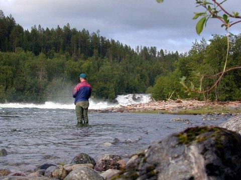 NATTESTENGT. Den nederste delen av Målselva blir nattestengt fra og med denne fiskesesongen. Årsaken er økt aktivitet langs elva om natten de siste årene, noe som skaper støy for beboerne i området.