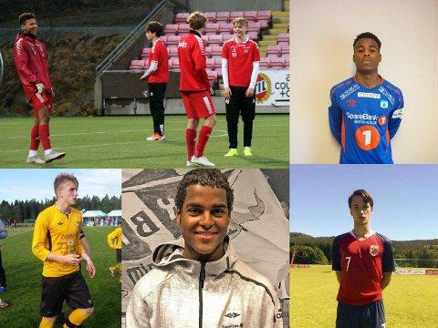 STORTALENTER: Det er mange gode, unge fotballspillere i nord, og dette er bare noen av dem. Oppe fra venstre: Bryan Fiabema, Sigurd Grønli, Tomas Stabell og George Lewis. Nede fra venstre: Sindre Duurhuus, Emil Ceide og Brage Rønning.