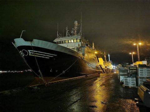 SMITTE: Det russiske fartøyet «Sapphire II» lå søndag kveld til kai i Breivika i Tromsø.