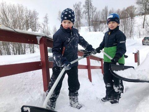 BRØDRE: Henrik og Aksel Norbakken har fått seg jobb. De rydder snø for eldre.