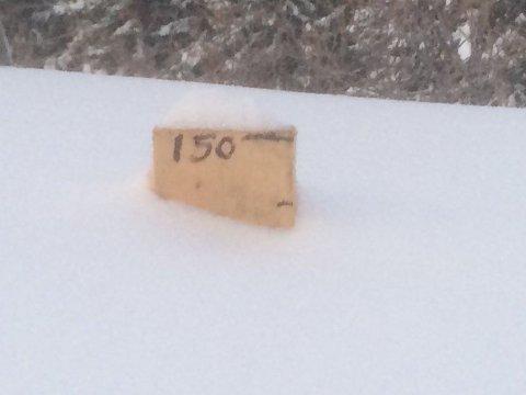 Fattige fire centimeter av målestaven på Lyngseidet stikker opp av snøen. Foto: Rolf Magne Hansen