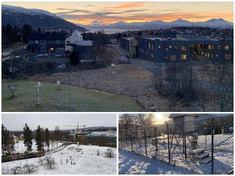 SNØ OG BART: Se forskjellene på Tromsø, Bergen og Oslo. Tromsø er øverst, Oslo til venstre og Bergen til høyre.