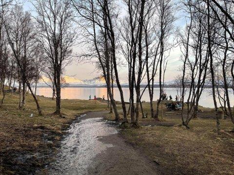 ADVARER: Politiet advarer foreldre i Tromsø etter at de er varslet om at ungdommer planlegger å samles i Bukta. Foto: Elvira Jeanett Kolsing