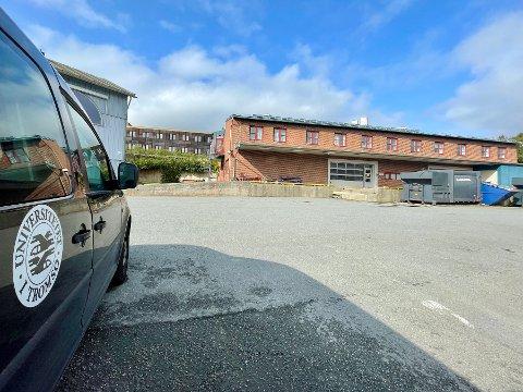 TERNING: I en kjeller ved Universitetet i Tromsøs driftsavdeling avgjorde tre UiT-ansatte millionkontrakten gjennom å kaste en terning to meter opp i lufta. På forhånd skal de ha gitt tre ulike kraftselskaper hver sine nummer på terningen.
