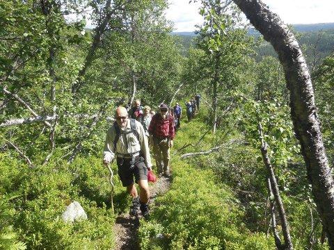 Deltakere: 19 personer var med på turen opp til 1300 meter.