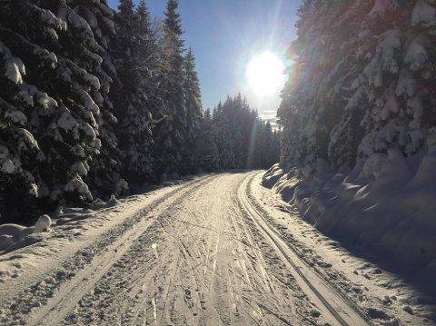 Totenåsen i tidlig vinterprakt