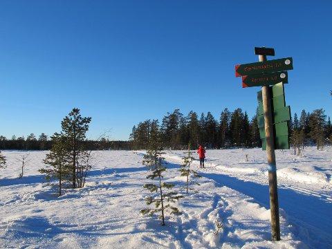 Det er ventet perioder med sol og temperaturer ned mot 20 kuldegrader i Oppland neste uke.