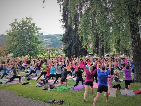 Fellesyoga: Inntil 150 stykker møtte opp til Yoga i parken på LIllehammer hver onsdag sist sommer. Nå kommer tilbudet til Gjøvik.