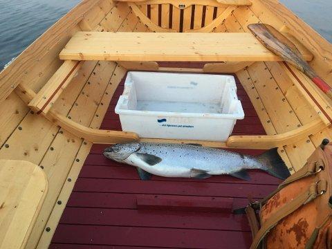 Jørn Lunn Olsen flotte fisk på 5,7 kilo.