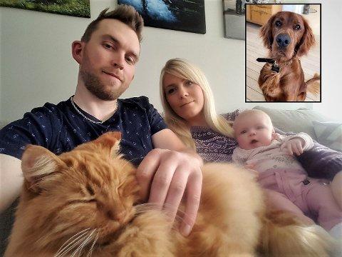 VEL HJEMME: Geir Ove,  Janne og lille Miley Skogheim-Ruud takker nabohunden Balto for at Pusur (10) er vel hjemme på fanget etter et dramatisk døgn.