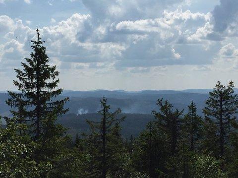 HER BRENNER DET: Politiet har fått meldinger om at det ryker i skogsområdene ved Bergsjøen på Totenåsen fredag ettermiddag.