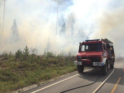 Brannvesenet har fått kontroll over skogbrannen.
