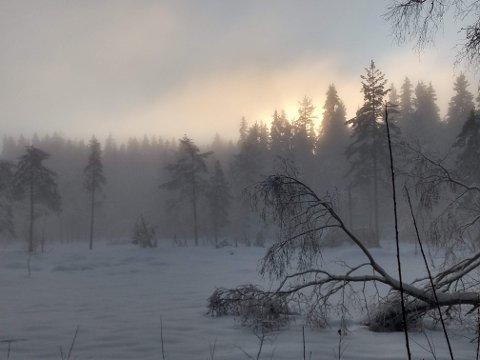 SKYENE LETTER: Fikk du nye ski til jul, er andre og tredje juledag gode anledninger til å få testet dem. Da skal været bli lettskyet og sola vil dukke fram.