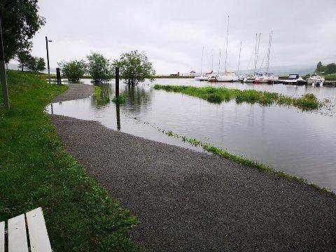 MIDDELFLOM: Vannet har lagt seg over gangsti ved Fredevika båthavn.