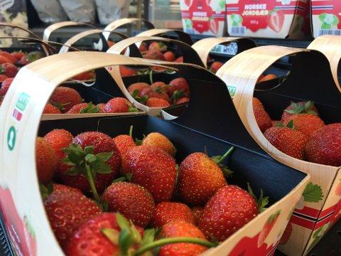 VARIERENDE PRISER: Det er et relativt stort sprik i prisene på jordbær på de forskjellige utsalgsstedene.