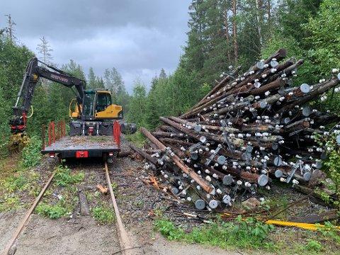 Store mengder med stolper og ledninger er tatt ned langs hele Valdresbanen fra Bjørgo til Eina. Her ved Trevatn stasjon.