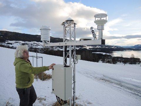 LANGT OVER SNITTET: Marte Skattebu ved  Bioforsk Øst Løken ved den meteorologiske målestasjonen. – Det er en merkelig januar, fastslår hun.
